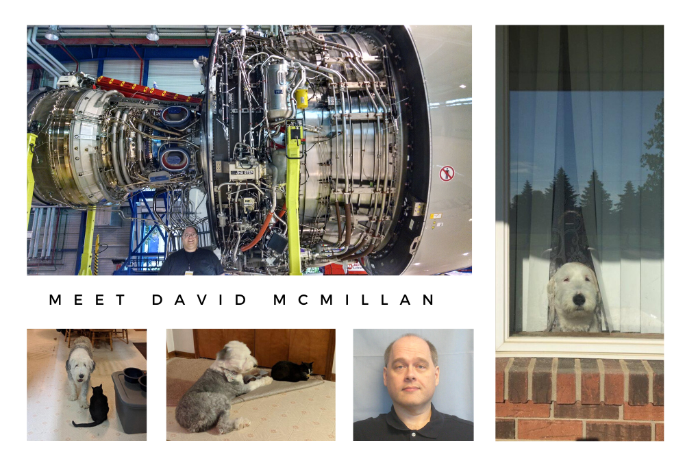 Meet Dave McMillan article collages